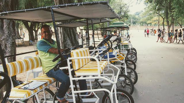 公園内を走れるレンタル自転車