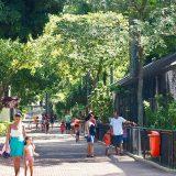 リオデジャネイロ動物園