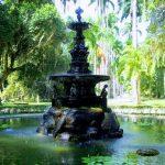 植物に囲まれて癒しの時間!ジャルジン・ボタニコ【Jardim Botânico】